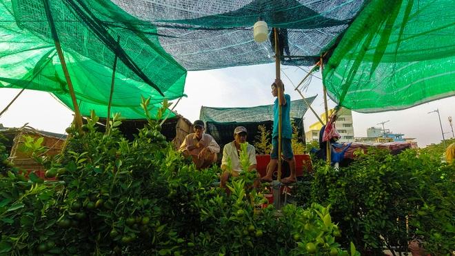 Một lần đi chợ hoa trên bến dưới thuyền độc, lạ nhất Sài Gòn - 8