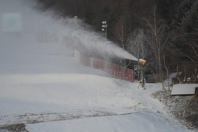 Tết này, trải nghiệm trượt tuyết? - 12