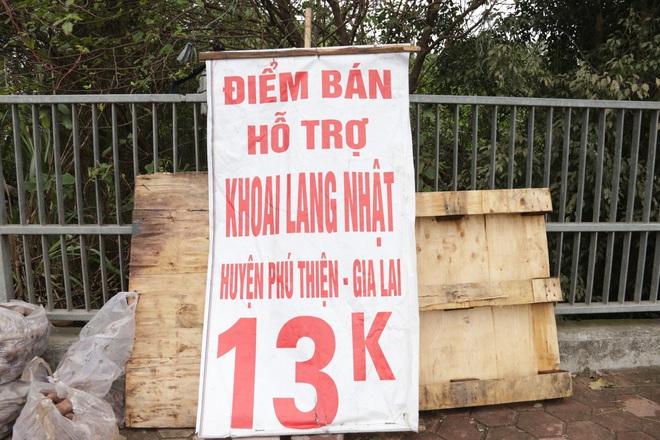 Hà Nội: Lấy mác giải cứu nông sản để chiếm vỉa hè nhiều tuyến phố - 6