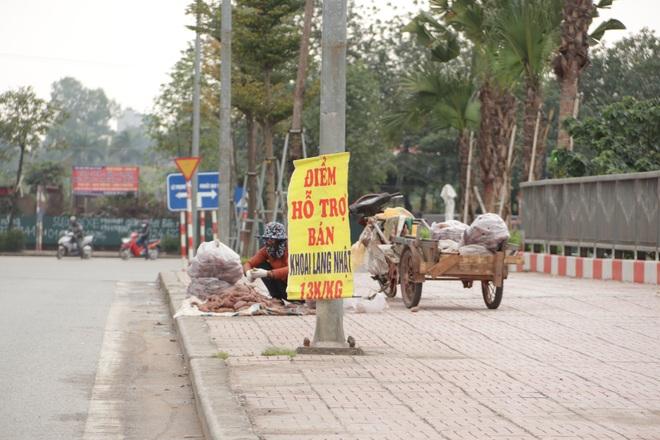 Hà Nội: Lấy mác giải cứu nông sản để chiếm vỉa hè nhiều tuyến phố - 11