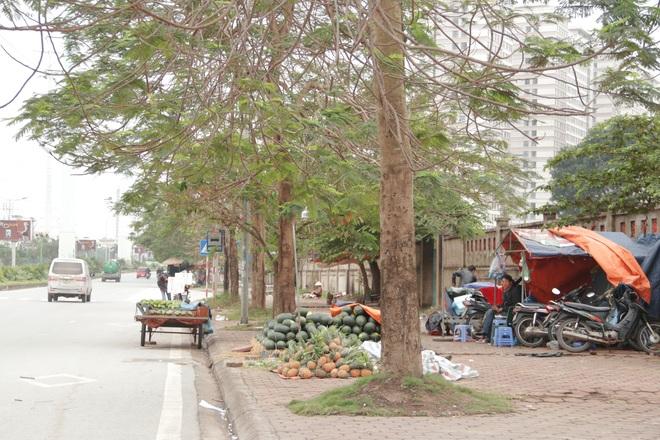 Hà Nội: Lấy mác giải cứu nông sản để chiếm vỉa hè nhiều tuyến phố - 13