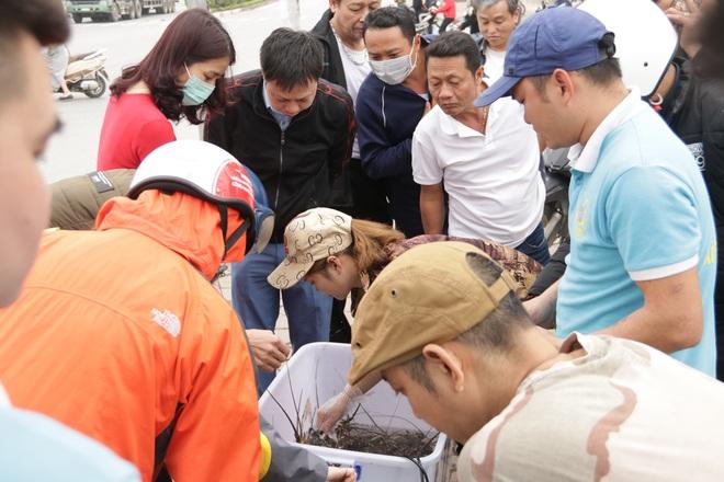 Hà Nội: Lấy mác giải cứu nông sản để chiếm vỉa hè nhiều tuyến phố - 22