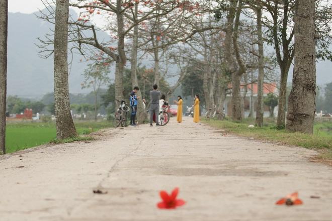 Hoa gạo nhuộm đỏ những góc trời ở ngoại thành Hà Nội - 8