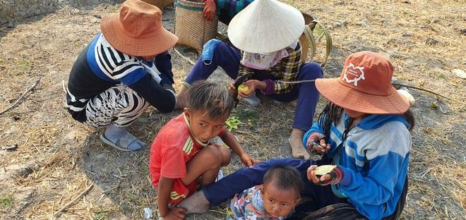 Người dân Ninh Thuận quay quắt trong cơn hạn hán kéo dài - 16