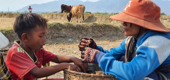 Người dân Ninh Thuận quay quắt trong cơn hạn hán kéo dài - 27