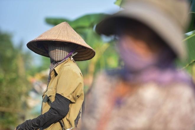 Câu con lộc trời cho: nông dân Hải Dương kiếm nửa triệu đồng mỗi ngày - 10