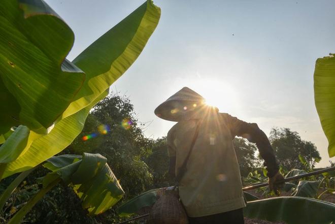 Câu con lộc trời cho: nông dân Hải Dương kiếm nửa triệu đồng mỗi ngày - 14