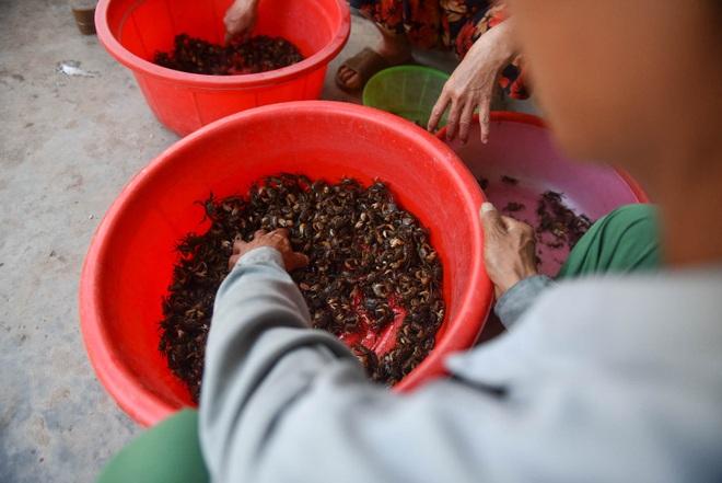 Câu con lộc trời cho: nông dân Hải Dương kiếm nửa triệu đồng mỗi ngày - 18