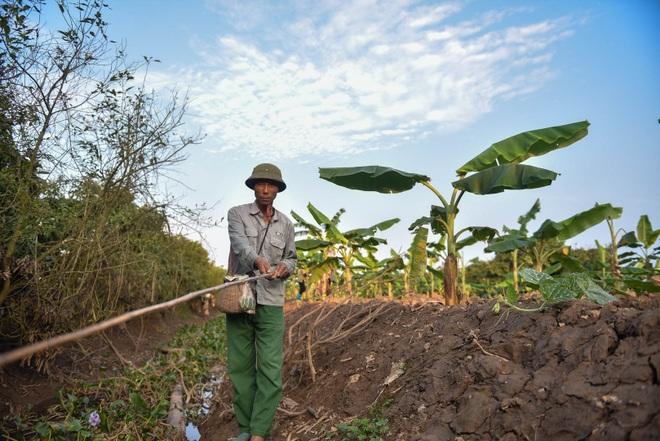 Câu con lộc trời cho: nông dân Hải Dương kiếm nửa triệu đồng mỗi ngày - 6