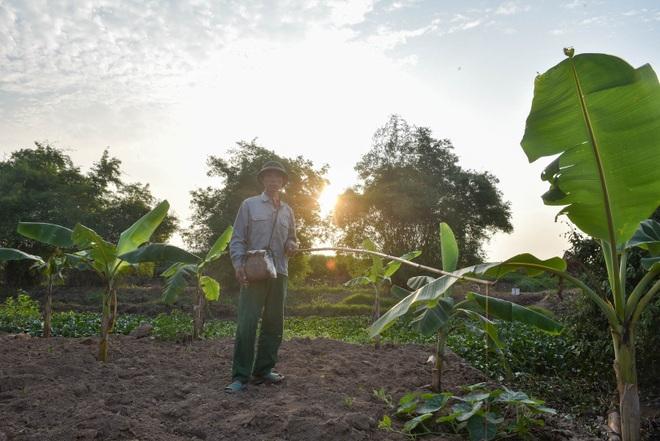 Câu con lộc trời cho: nông dân Hải Dương kiếm nửa triệu đồng mỗi ngày - 9