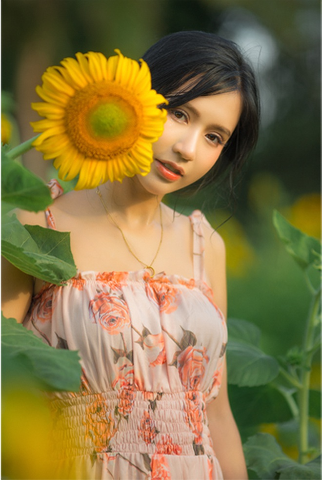 Ngắm cánh đồng hoa hướng dương rực rỡ, trải thảm vàng trong KĐT Ecopark - 11