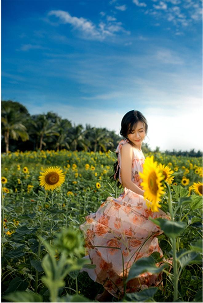 Ngắm cánh đồng hoa hướng dương rực rỡ, trải thảm vàng trong KĐT Ecopark - 10