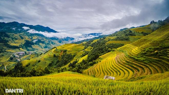 Chạy bộ khám phá vẻ đẹp rực rỡ của những bản làng Mù Cang Chải - 5