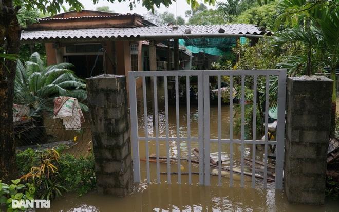 Quảng Bình: Người dân khóc ròng vì gia sản trôi theo dòng lũ dữ - 4
