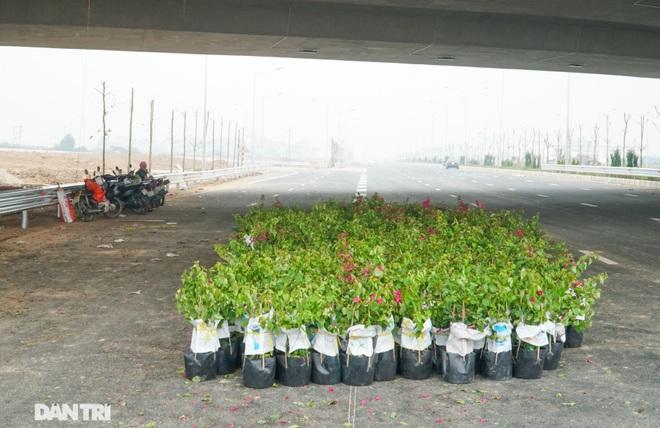 Toàn cảnh nút giao cao tốc hơn 400 tỷ ở Hà Nội trước ngày thông xe - 9