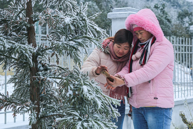 Tourists enjoy pouring out on the street, taking pictures with white snow in Y Ty - 10