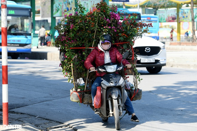 The sunshine came back and filled the streets of Hanoi on the 29th of Tet - 17th