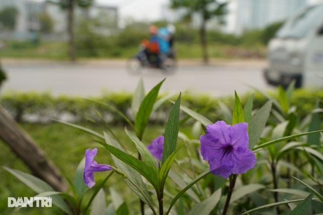 Toàn cảnh tuyến đường hơn 7.500 tỷ đồng kết nối 4 quận, huyện ở Hà Nội - 8