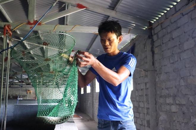 Câu chuyện khởi nghiệp của chàng kỹ sư với 4.000 con cá chình - 2