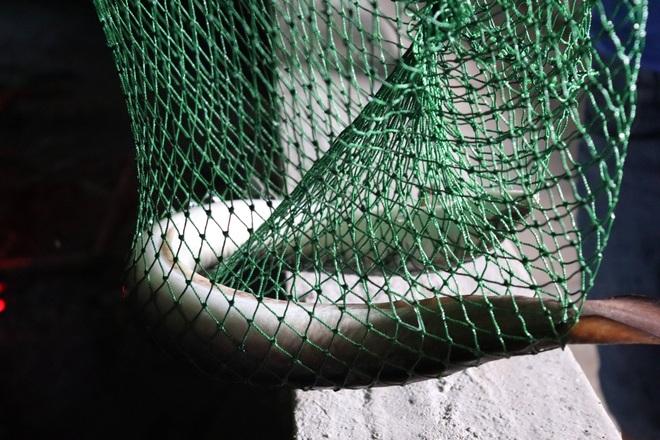 Câu chuyện khởi nghiệp của chàng kỹ sư với 4.000 con cá chình - 7