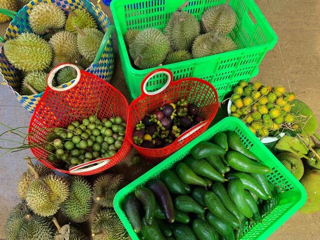 Vườn sai trĩu quả của 9X Bình Phước bỏ phố về quê nối nghiệp cha - 12