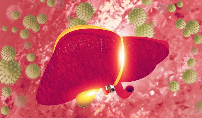Tìm hiểu về căn bệnh viêm gan B có nguy hiểm không? - 1