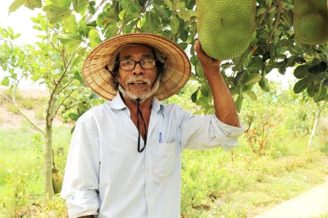 Lão nông bắt cây ra quả trên đất cằn, thu hàng trăm triệu đồng mỗi năm - 1