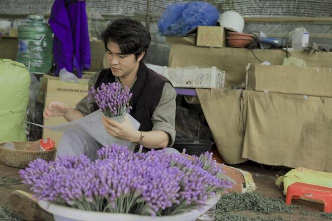 Chàng trai Lâm Đồng thuê đất trồng hoa thơm, doanh thu 80 triệu đồng/tháng - 6