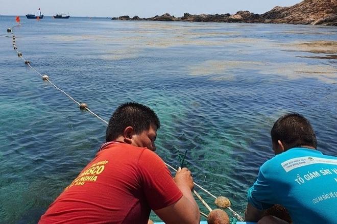 Thả, đặt phao tiêu bảo vệ 4 khu vực biển vịnh Quy Nhơn - 1