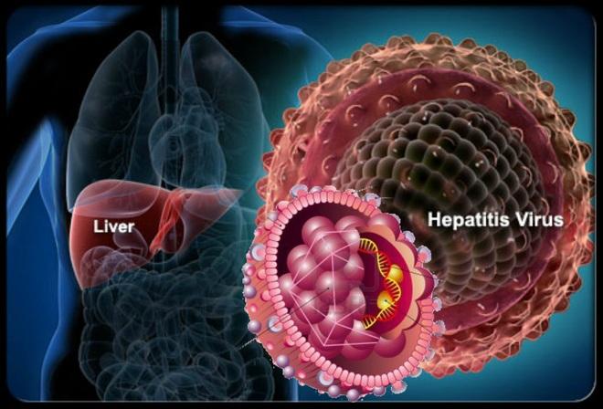Điều trị dự phòng viêm gan virus B tái hoạt động trên bệnh nhân ung thư - 1