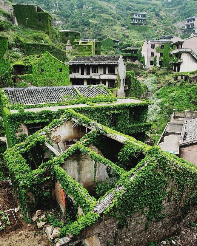 Cây xanh nuốt chửng làng ma nổi tiếng Trung Quốc - 4