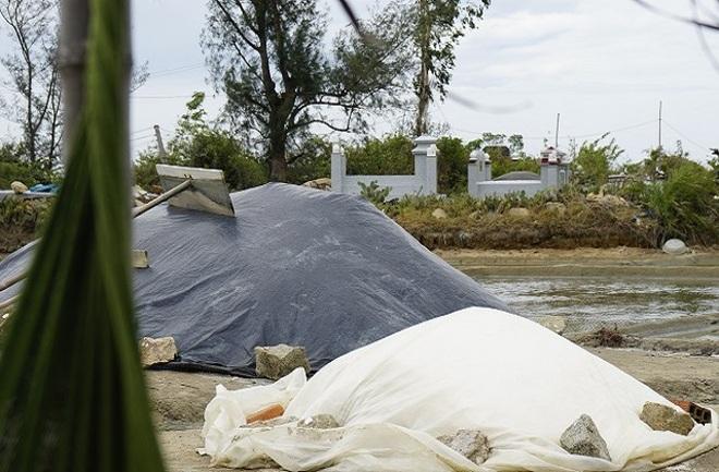 Bán 1 kg muối mua không nổi ổ bánh mì chay, diêm dân tính bỏ ruộng hoang - 3