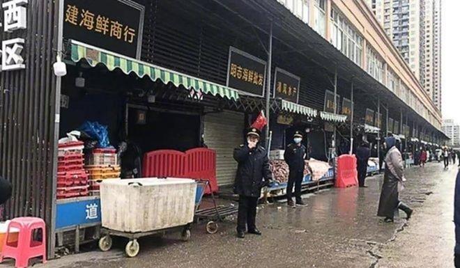 Gần 50.000 động vật hoang dã được bán ở Vũ Hán trước khi Covid-19 bùng phát - 1