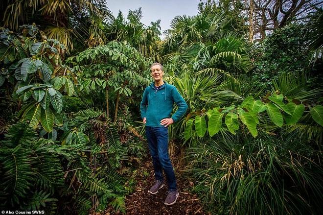 Người đàn ông hơn 30 năm tạo khu rừng giữa phố - 1