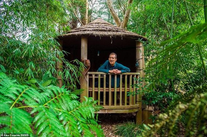 Người đàn ông hơn 30 năm tạo khu rừng giữa phố - 5