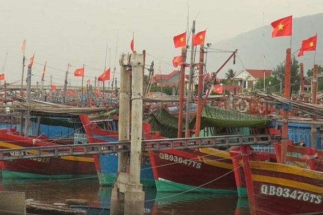 Doanh nghiệp mất tiền tỷ vì không thể xuất khẩu hải sản sang Trung Quốc - 5