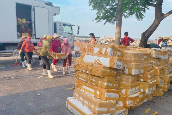 Doanh nghiệp mất tiền tỷ vì không thể xuất khẩu hải sản sang Trung Quốc - 1