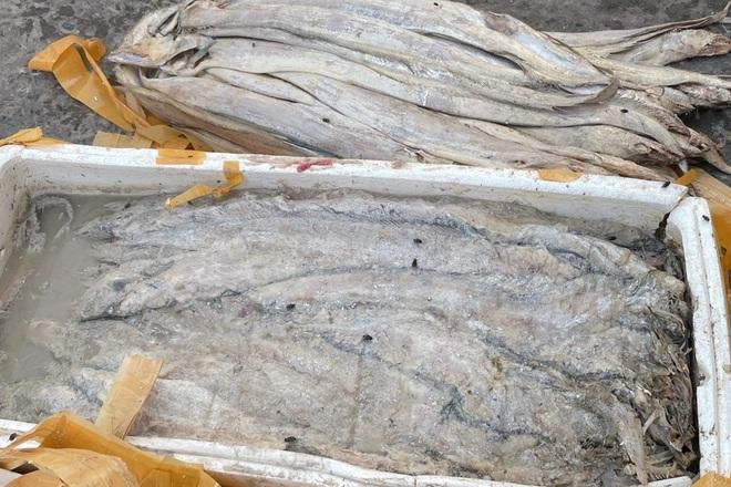 Doanh nghiệp mất tiền tỷ vì không thể xuất khẩu hải sản sang Trung Quốc - 3