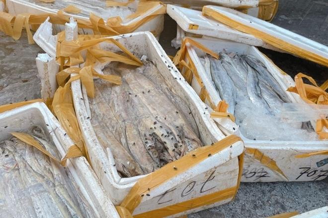 Doanh nghiệp mất tiền tỷ vì không thể xuất khẩu hải sản sang Trung Quốc - 4
