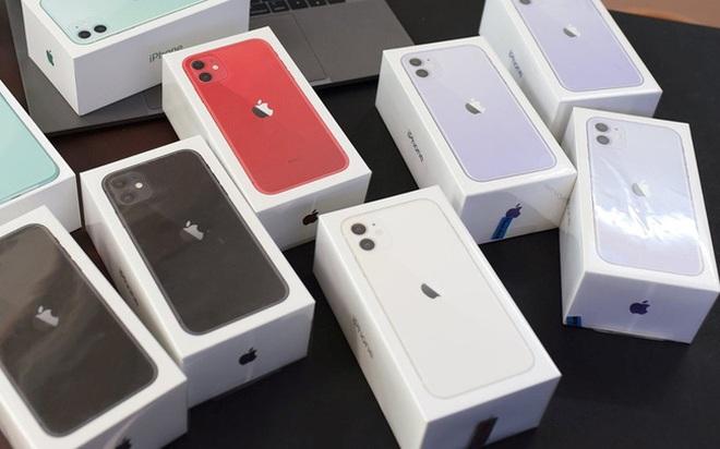 iPhone đời cũ đồng loạt giảm giá tại Việt Nam - 1