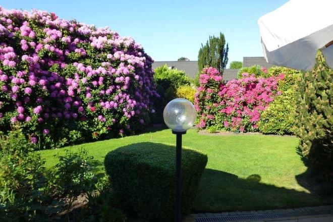 Khu vườn đẹp như cổ tích bên nhà cổ 120 năm tuổi ở Đức của mẹ đảm gốc Việt - 5