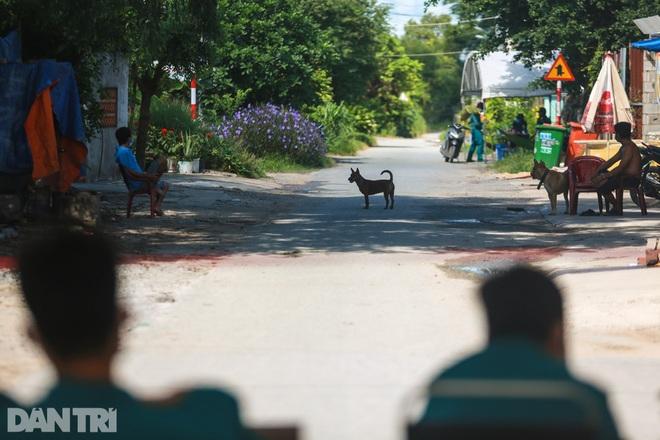 Phong tỏa ổ dịch có 16 ca nhiễm SARS-CoV-2 trong khu hơn 1.000 dân ở Củ Chi - 7