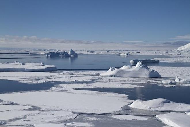 10 sự thật thú vị về Nam Đại Dương - 6