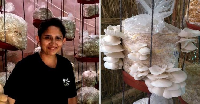 Quyết định nghỉ việc, người phụ nữ trồng nấm sạch kiếm hơn 30 triệu/tháng - 2