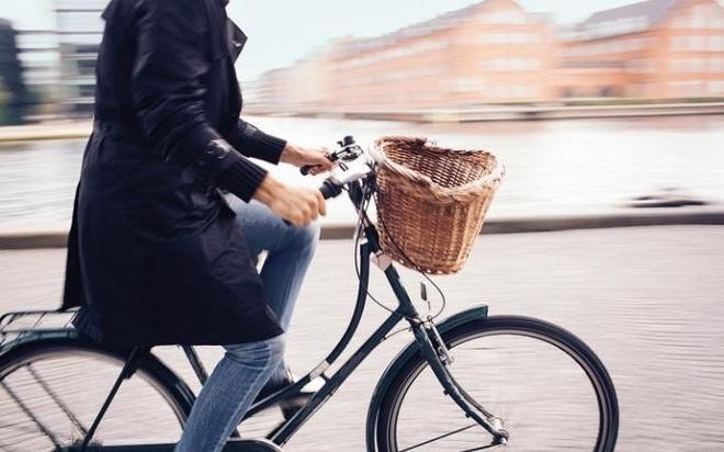Tại sao người Đan Mạch hạnh phúc hàng đầu thế giới? - 1