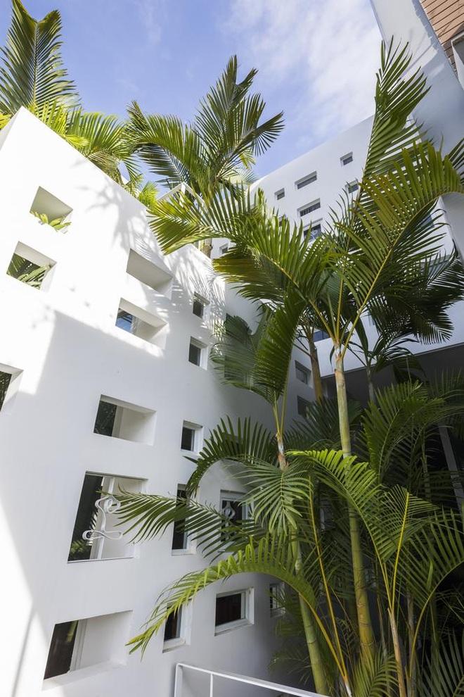 Thiết kế nhà độc đáo với 400 lỗ ánh sáng, tiền điện 250.000 đồng/tháng - 4