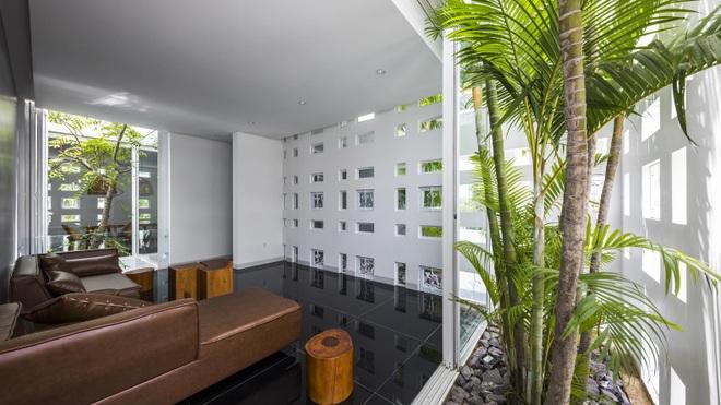 Thiết kế nhà độc đáo với 400 lỗ ánh sáng, tiền điện 250.000 đồng/tháng - 5