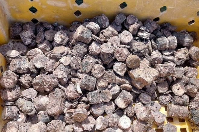 Lấy mẫu giám định số tiền xu cổ được tìm thấy dưới đáy biển Quảng Bình - 1