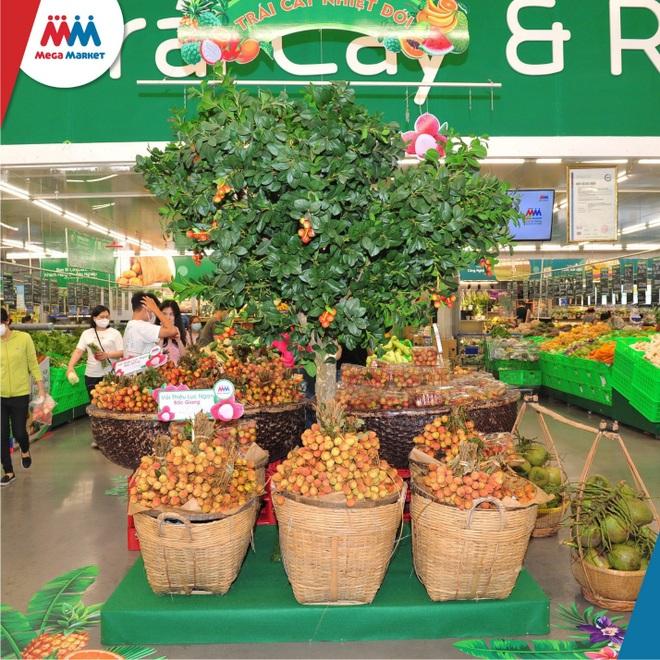 MM Mega Market đồng hành cùng Bắc Giang tiêu thụ hàng trăm tấn nông sản - 1