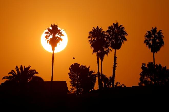 Nắng nóng như tận thế càn quét bờ tây nước Mỹ - 3